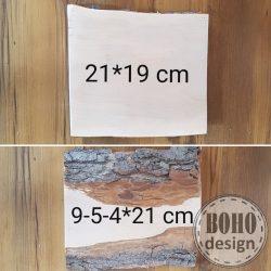Fotótranszfer  nagy kéreggel 21x19 cm